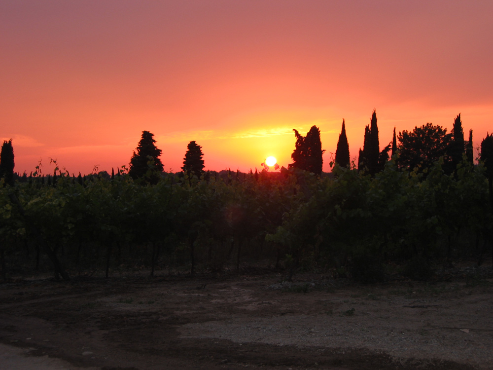 Sunset at Domaine de Barthe